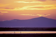 Bolluk Gölü